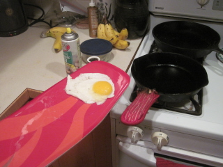 spatula egg Hungry?